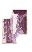 Página 5613